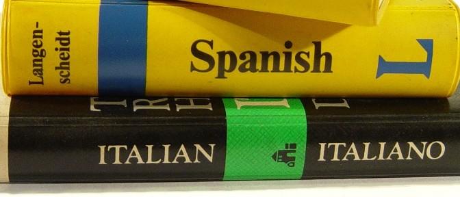 Translate a WordPress Blog