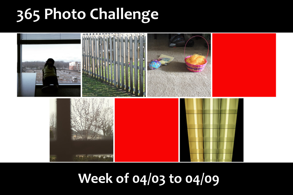 Photo Challenge Week 15