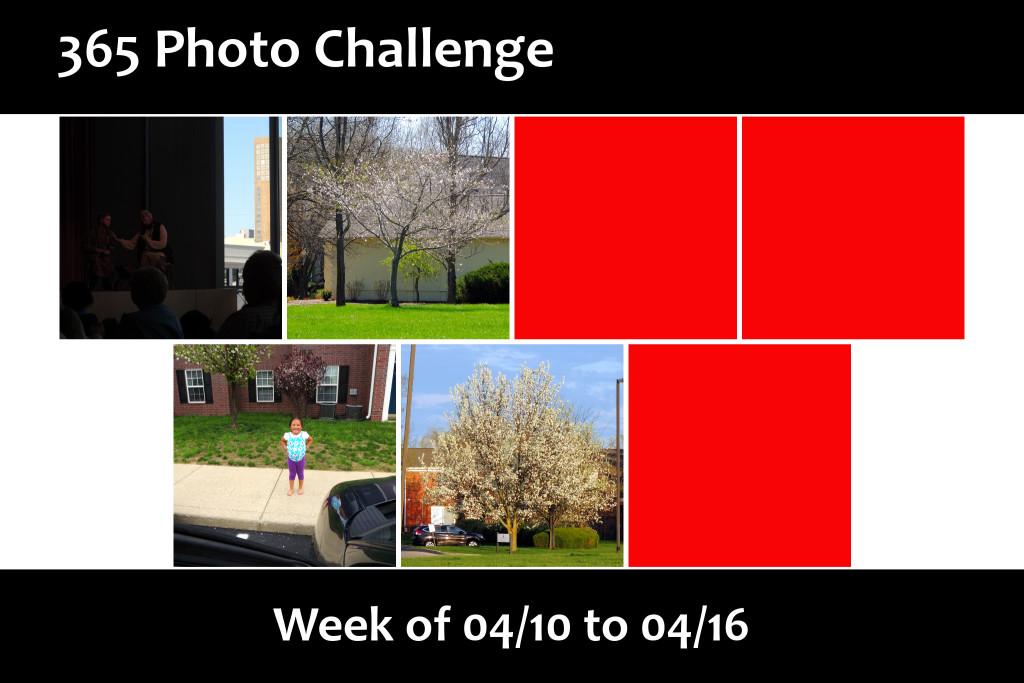 Photo Challenge Week 16